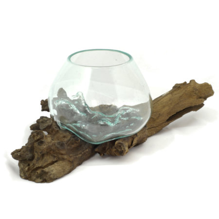 Kaffeewurzel Glas Natur Deko